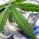 房东和经纪人要如何小心'大麻屋'带来的数万美元损失...